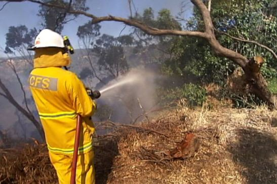 Photo: The Emergency Services Levy was originally implemented to pay for emergency response crews. (ABC News)