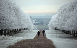 Winter will arrive in Britain next week with frosts and freezing fog Photo: GETTY
