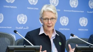 The head of the United Nation's Office for Disaster Risk Reduction, Margareta Wahlstrom