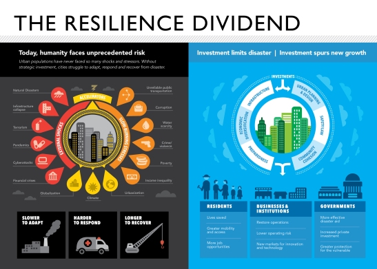 """Every city has a different set of needs—but every city needs a Chief Resilience Officer. While 100 Resilient Cities is helping to hire the first 100, other cities don't have to wait."""