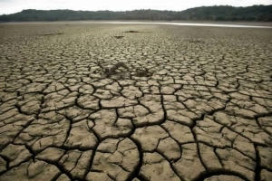 Droughts are expected to increase across the globe. (Photo : Reuters)  Read more: http://www.hngn.com/articles/51165/20141129/exposure-to-extreme-weather-increasing-across-the-globe-report-says.htm#ixzz3L0Iztvfp