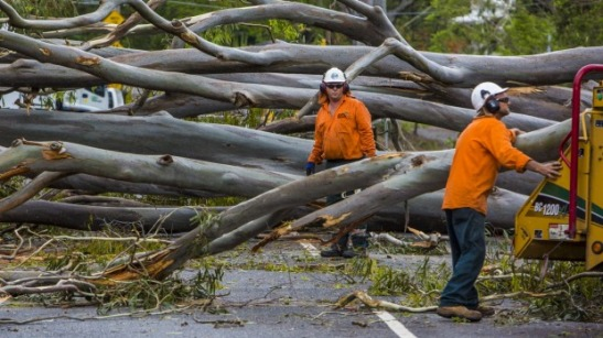 Storm damage in Toowong from the storm that hit Brisbane on November 28, 2014. Photo: Glenn Hunt