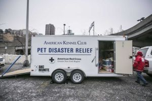 """New York City's first """"mobile pet disaster relief trailer"""" is revealed outside a Westminster Week Dog Show Event at Pier 94 in Manhattan on February 14, 2015. (Credit: Anthony Lanzilote)"""