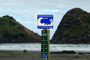 Tsunami evacuation route sign in Piha, New Zealand. 2014 was a year without a single large-scale Asia-Pacific earthquake or tsunami, yet 119 disasters still caused more than 6,000 fatalities and economic losses of almost US$60 billion. Image: ChameleonsEye / Shutterstock.com