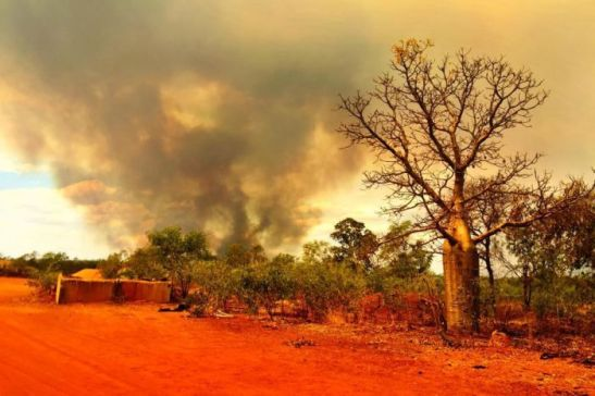 Photo: We can expect an increased risk of bushfires, such as this one near Willare, in WA's Kimberley earlier this year. (Audience submitted: Carina Cooke