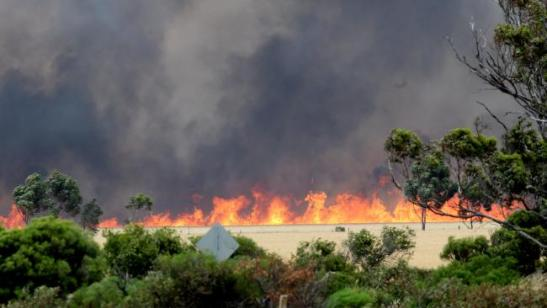 The fire burns near Mallala on Wednesday. Picture: Calum Robertson