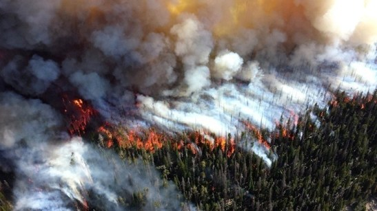 Did climate change influence last year's extreme weather events, such as the wildfires that devastated California? Photo credit: National Park Service Climate Change Research