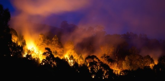 Fires are increasing: time to prepare. Fire image from www.shutterstock.com