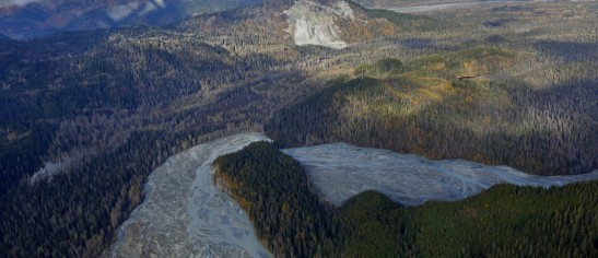 A river winds through forest as seen in an aerial view in Alaska.  Image: REUTERS/Bob Strong