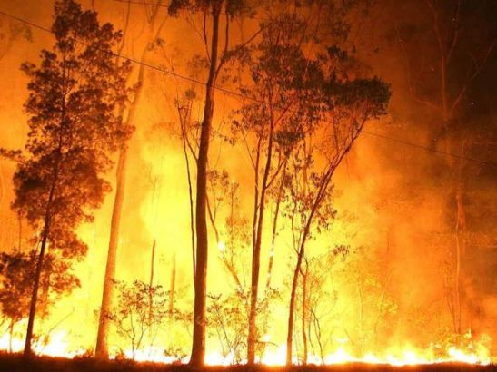 DANGER PERIOD: Fire crews battled a monstrous blaze at Halfway Creek last year.  Frank Redward