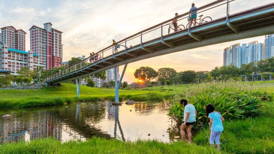 ASLA 2016 Honor Award, General Design Category. Bishan-Ang Mo Kio Park by Ramoll Studio Dreiseitl. [Photo: Lim Shiang Han]