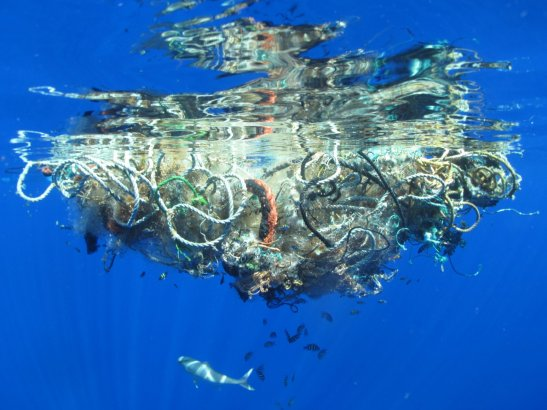 A massive collection of garbage in the Pacific Ocean