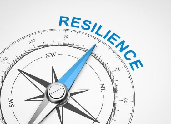 resilience scale