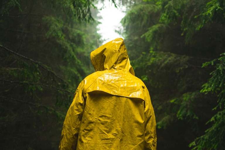 Rear View Of Man Wearing Yellow Raincoat In Forest During Rain